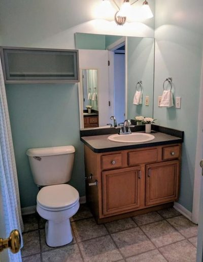 Master Bathroom Vacant Home Staging, Color Consultation, Redesign, Microstaging